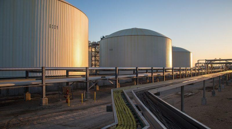 Trafigura pronta ad investire nella produzione di ammoniaca green
